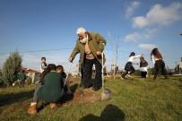 ÖĞRENCİLER - En Büyük Hayalini 93 Yaşında Gerçekleştirdi