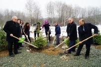 VEDAT YıLMAZ - Kastamonu'da '24 Kasım Öğretmenler Günü Hatıra Ormanı' Oluşturuldu