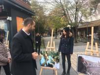 ANıTKABIR - Kayseri Ülkü Ocakları'ndan Alparslan Türkeş Fotoğraf Sergisi