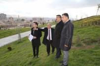 KENTSEL DÖNÜŞÜM PROJESI - Niğde Belediye Başkanı Özkan Kentsel Dönüşümde İncelemelerde Bulundu