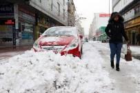 YÜZÜNCÜ YıL ÜNIVERSITESI - Van'da Kar Esareti