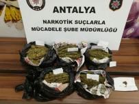 KıLıÇARSLAN - Antalya'da Uyuşturucu Operasyonları Açıklaması 6 Gözaltı
