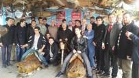DENİZ CANLILARI - İmam Hatip Lisesi Öğrencileri, Türkiye Deniz Canlıları Müzesi'ne Hayran Kaldı