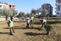 Turgutlu'da Ağaçlandırma Çalışması