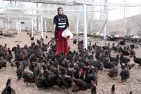 Kadın Girişimci, Aldığı Hibe Desteğiyle Organik Yumurta Çiftliği Kurdu