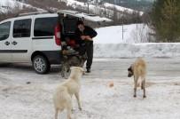 SOKAK KÖPEĞİ - Sokak Köpekleri İçin Haftanın 3 Günü 30 Kilometre Yol Gidiyor