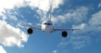 EVCİL HAYVAN - Almanya'ya Giden Uçaklarda Buna Yasak Getirildi