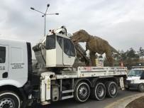 DINOZOR - Başkent'teki Dinozor Maketi Kaldırıldı