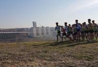 TURKCELL - Darıca Şampiyonluğa Koşuyor