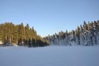 Gerede'de Kar Kalınlığı 45 Santimetreyi Buldu