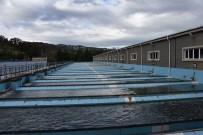 SU ARITMA TESİSİ - Başkan Yılmaz Açıklaması 'Bizim Suyumuz, Şişe Sularından Daha Rafine'