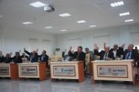 ELEKTRİK HATTI - İl Genel Meclisi Kasım Ayı 17'Nci Birleşiminde 4 Gündem Maddesi Görüşüldü