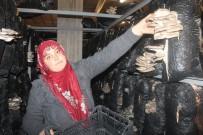 İSTIRIDYE - Kadın Çiftçi Aldığı Hibeyle İstiridye Mantarı Yetiştiriyor