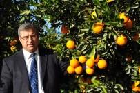 HAŞHAŞ - Karademir Açıklaması 'Tarım Alanları Yok Oluyor, Kırsal Nüfus Azalıyor'