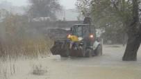 SEL BASKINI - Manavgat Yağmura Teslim Oldu, 15 Günlük Buzağı İş Makinesiyle Kurtarıldı
