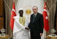 GAMBIYA - Cumhurbaşkanı Erdoğan, Gambiya Büyükelçisini Kabul Etti