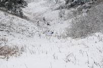 TENDÜREK DAĞI - Kar Altında Terör Operasyonu