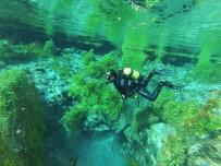 Sakaryabaşı Tatlı Su Dalışlarında Zirveye Oynuyor