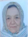 SUAT YıLDıZ - Kırmızı Işıkta Geçen Yaşlı Kadına Araba Çarptı