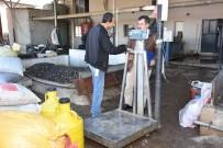 GÖKHAN KARAÇOBAN - Alaşehir Zabıtasından Zeytinyağı Fabrikalarına Denetim