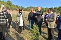 GÖNÜL ELÇİLERİ - Mersin'de Gönül Elçileri Fidan Dikti
