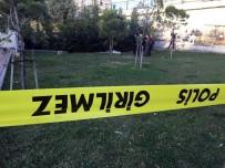METRO İSTASYONU - Vefalı Köpek, Parkta Ölen Sahibinin Başından Ayrılmadı
