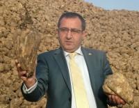 VAN GÖLÜ - Ahlat'ta Şeker Pancarı Üretimi Arttı