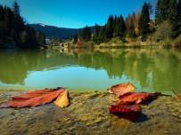 ALABALIK - Trabzon'un Balıklıgöl'ünde Sonbahar