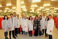 BERFIN - İTÜ Tekstil Fakültesi Öğrencileri SANKO'da