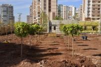 YÜRÜYÜŞ YOLU - Diyarbakır'da Kent Meydanı Çalışmaları Sürüyor