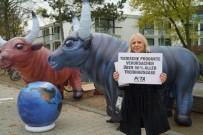 KÜRESEL ISINMA - İklim Değişikliği Konferansı Bonn'da Başladı