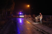 ŞEYH ŞAMIL - Kavga İhbarı Üzerine Gelen Polis, Bir Kişiyi Bıçaklanmış Halde Buldu