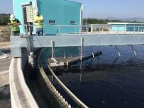 SU ŞEBEKESİ - OSB'ler Tarafından 175 Milyon Metreküp Su Çekildi