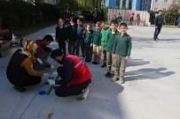 ERKMEN - Gönüllü Gençler Okul Boyadı