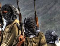 VERGİ DAİRESİ - İsveç'te PKK kanalına polis baskını
