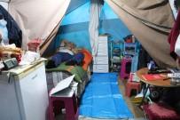 KIBRIS BARIŞ HAREKATI - 15 Yıldır Yaz Kış Çadırda Yaşıyor