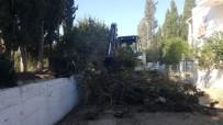 TURGUTREIS - Bodrum'da Dere Taşkınlarına Önlem