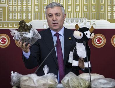 CHP'li vekil Meclis'e oyuncak dana ile geldi