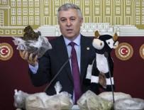 CHP - CHP'li vekil Meclis'e oyuncak dana ile geldi