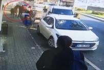 SARIYER ÇAYIRBAŞI - İstanbul'da Başıboş At Korkuttu