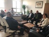 VERGİ DAİRESİ - Siirt TSO Heyetinden Vergi Dairesi Müdürü Balbay'a Ziyareti