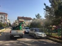 ÇAM KESE - Körfez'de Çam Kese Tırtılı İle Mücadele