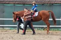 KARAAĞAÇ - Özel Çocuklar, Atlarla Buluştu