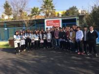 SOKAK HAYVANI - Gebze Veteriner İşlerinden 2017 Raporu