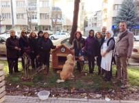 SOKAK HAYVANI - Sokak Hayvanlarına Yeni Kulübeler