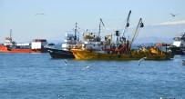 ABHAZYA - Abhazya'dan Türk Balıkçılara Kötü Haber