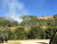 YANGINA MÜDAHALE - Alanya'da Orman Yangını Korkuttu