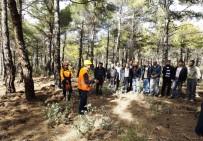 HALK EĞİTİM MERKEZİ - Antalya'da Ağaç Kesme Ve Boylama Operatörlüğü Kursu