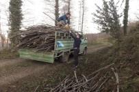 Ordu'da Kamyonetten Odun Yükünü Boşaltmaya Gülümseten Çözüm