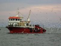 AHMET DEMIRCI - Türk tekneleri kaçan hamsinin peşine düştü